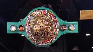 KIOVA 2020 KLITSCHKO WBC VYÖ (2).jpg